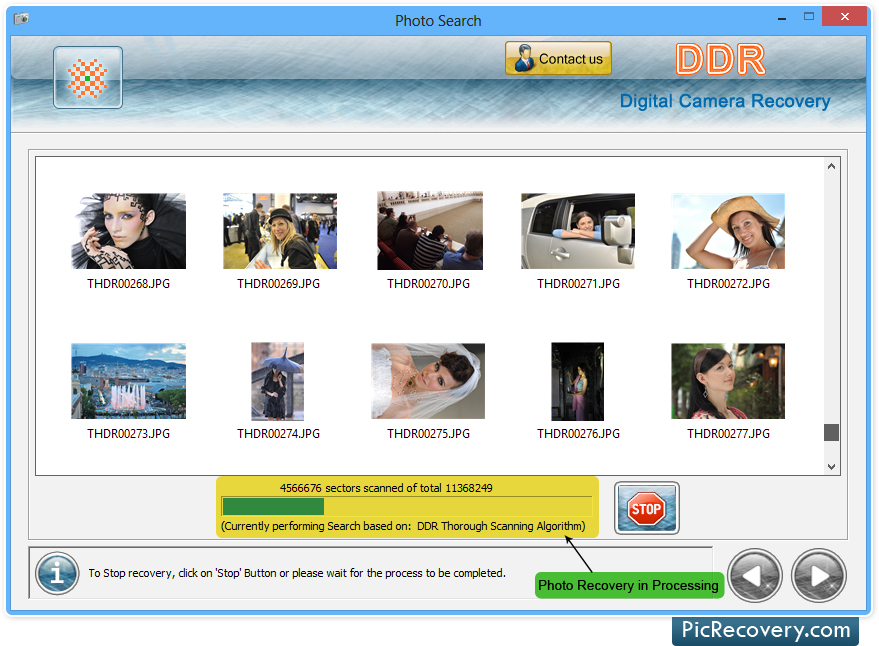 Digital Camera Recovery Software, Recover lost digital camera photos, restore deleted camera photos, recover formatted camera photographs, restore lost camera images, recover lost digital camera files, restore formatted digicam photos